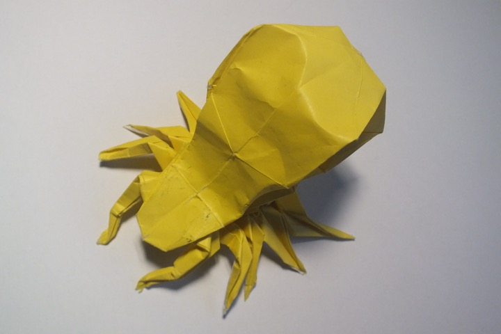 Origami Insects And Their Kin