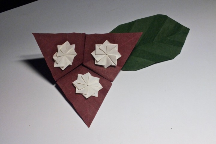 Origami Master Class Flowers