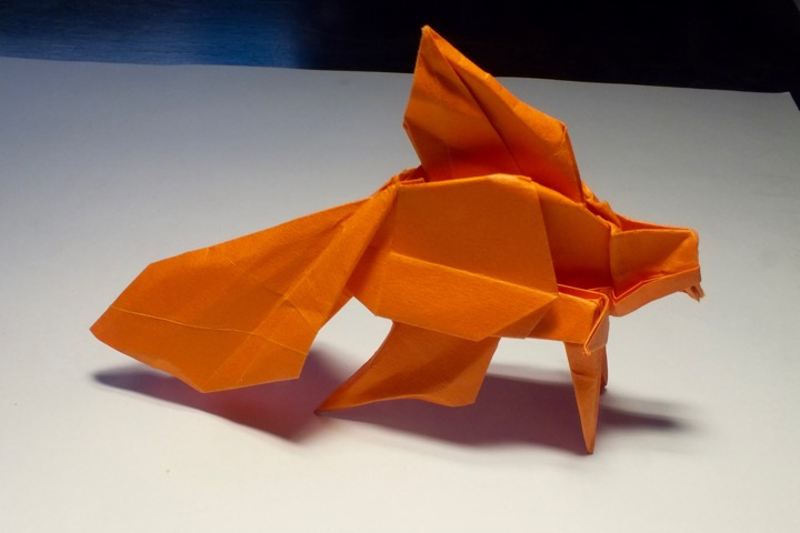 Origami Kit: Under the Sea: Amazon.de: Peter Pauper Press, Inc ... | 480x720
